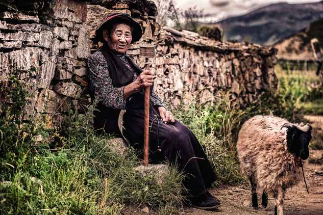 woman sitting on rock beside wall and near sheep